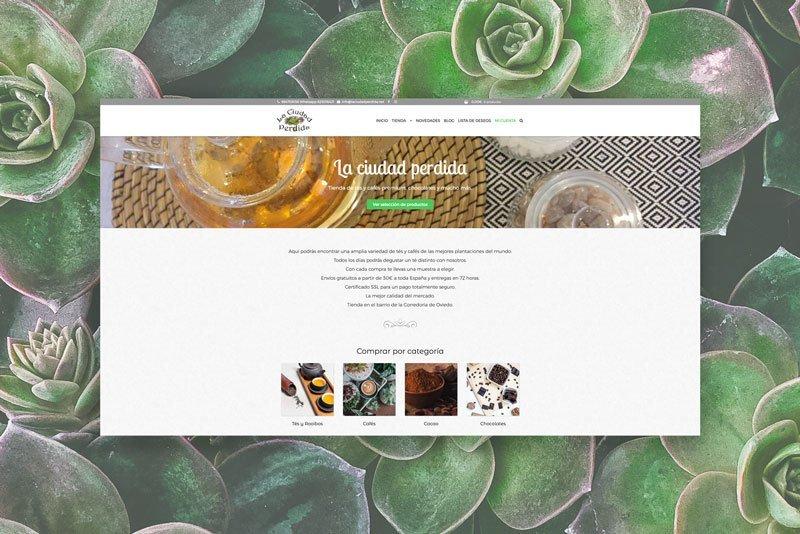 Página La Ciudad Perdida, Julia Menéndez desarrollo de tienda online en WordPress